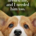 A Dog's Purpose Book Quotes Tumblr