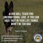 Bad Dog Owner Quotes Twitter