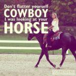 Beautiful Horse Quotes Tumblr