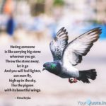 Beautiful Pigeon Quotes Twitter