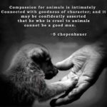 Best Quotes On Animals Twitter