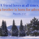 Bible Verses About Friendship And Love Tumblr