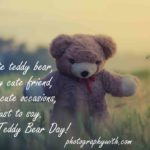 Caption About Teddy Bear Facebook