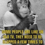 Caption Monkey Pinterest