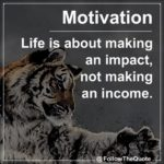 Cat Motivational Quotes Twitter