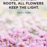 Cute Flower Quotes Facebook