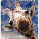 Cute Giraffe Quotes Twitter