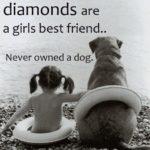 Dead Dog Quotes Tumblr
