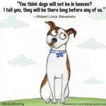 Dog Haters Quotes Facebook