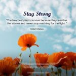 Encouraging Words For Healing And Strength