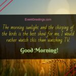 Fresh Good Morning Quotes