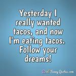 Funny Taco Sayings