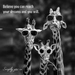 Giraffe Quotes Twitter