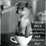 Good Morning Quotes With Animal Images Pinterest