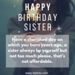 Happy Birthday Sister Funny Pinterest