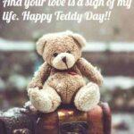 Happy Teddy Day Quotes Tumblr