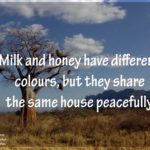 Honey And Milk Quotes Twitter