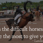Horse Captions Pinterest
