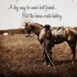 Horse Sayings Pinterest
