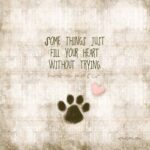 I Love My Puppy Quotes Tumblr