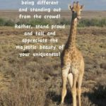 Inspirational Giraffe Quotes Facebook