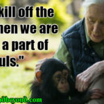 Jane Goodall Famous Quotes Twitter