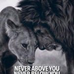 Lion Love Quotes Tumblr