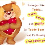 Love Quotes For Teddy Day Tumblr