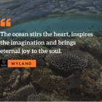 Marine Life Quotes