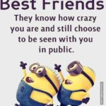 Minion Friendship Quotes Twitter