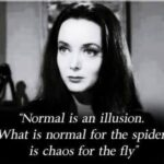 Morticia Addams Quotes Twitter