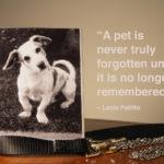 My Pet Quotes Facebook