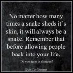 Quotes About Being A Snake Facebook