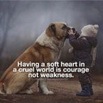 Quotes About Being Kind To Animals Twitter