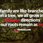Quotes About Trees And Family Facebook