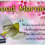 Quotesadda Good Morning