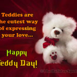 Rose Day Teddy Day Valentine Day