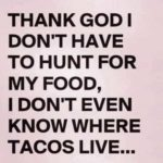 Sayings About Tacos Tumblr