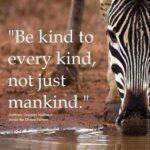 Slogan On Be Kind To Animals Tumblr