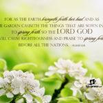 Spring Religious Quotes Pinterest