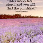 Summer Inspirational Quotes Pinterest