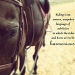 Thank You Horse Quotes Pinterest
