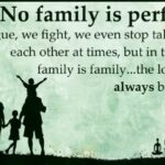 There Is No Perfect Family Quotes Facebook