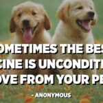 Unconditional Dog Love Quotes Tumblr