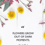 Uplifting Flower Quotes