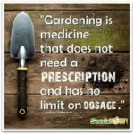 Vegetable Garden Quotes Facebook