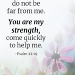 Verse For Strong Faith