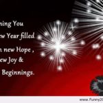 Wish You And Your Family Happy New Year