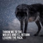 Wolf Pictures With Quotes